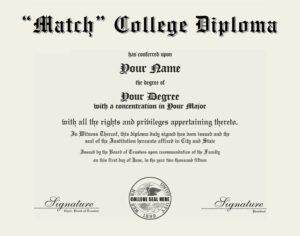 Fake College Diploma Replica
