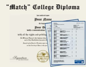 Fake College Diploma Replica with metallic seal and Transcripts